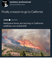 cnn.com, Memes, and California: teromte amateur professional  @typicalterome  Finally a reason to go to California  CNN @CNN  Marijuana farms are burning in California  wildfires cnn.it/2hExKSf  @typicalterome I swear California is the most overrated state there is. So are Florida and Texas
