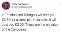 "Http, Jamaica, and Wholesome: Terry Burgoyne  @terryburgoyne96  In Trinidad and Tobago it will cost you  £2.50 for a steak pie, in Jamaica it will  cost you E3.00. These are the pie rates  of the Caribbean <p>Wholesome pie via /r/wholesomememes <a href=""http://ift.tt/2xEAl5S"">http://ift.tt/2xEAl5S</a></p>"