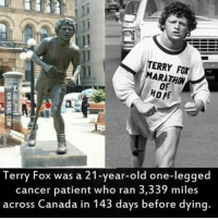 Memes, Canada, and Cancer: TERRY MARATHON  HOME  Terry Fox was a 21-year-old one-legged  cancer patient who ran 3,339 miles  across Canada in 143 days before dying. One word. Boss.