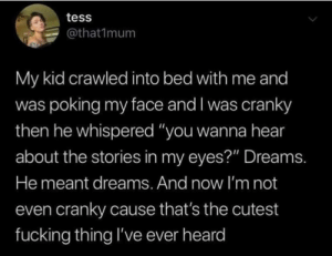 "👀📚  (via Twitter.com/that1mum): tess  @that1mum  My kid crawled into bed with me and  was poking my face and I was cranky  then he whispered ""you wanna hear  about the stories in my eyes?"" Dreams.  He meant dreams. And now I'm not  even cranky cause that's the cutest  fucking thing I've ever heard 👀📚  (via Twitter.com/that1mum)"