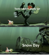 Snow days are the best: Tests I didn't study for  Me  Snow Day Snow days are the best