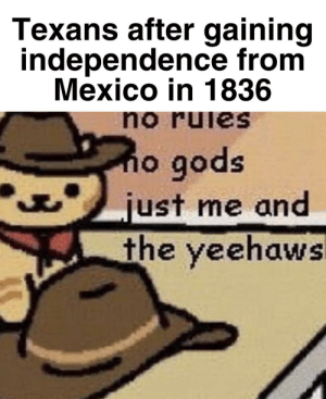 History, Mexico, and Texans: Texans after gaining  independence from  Mexico in 1836  no ruies  no gods  just me and  the yeehaws The Alamo really be wilding