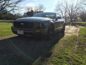 2015-ford-mustang:  She's not much but she's mine.: * TEXAS 2015-ford-mustang:  She's not much but she's mine.