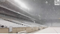 Memes, News, and Fox News: Texas A&M  FOX  NEWS Texans were delighted with a surprise snowfall on Thursday night. Take a look at Kyle Field at Texas A&M University.