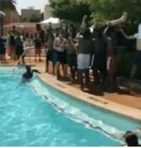 Party, Sports, and Twitter: Texas coach Tom Herman really got RKO'd at the Longhorns' recruiting pool party 😂 (via Jordan Traylor-Twitter)