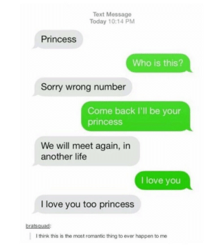 Life, Love, and Memes: Text Message  Today 10:14 PM  Princess  Who is this?  Sorry wrong number  Come back I'll be your  princesS  We will meet again, in  another life  I love you  I love you too princess  bratsquad:  I think this is the most romantic thing to ever happen to me Sorry wrong number via /r/memes https://ift.tt/2R7H1n5