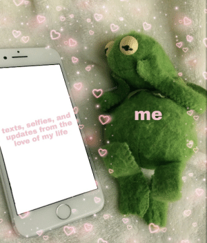 Life, Love, and Tumblr: texts, selfies, and  updates from the  love of my life  me cutekermit:i love my girlfriend so gosh darn much !!!!! [original pic is from seoglyu ♡]