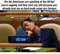 🇻🇳: tfw the Americans are speaking at the UN but  you're napping and they can't say shit because you  already beat em on hard mode using rice farmers  VIET NAM 🇻🇳