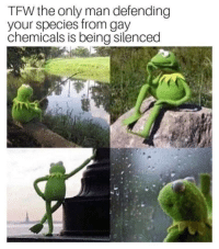 Tfw, Alex Jones, and Gay: TFW the only man defending  your species from gay  chemicals is being silenced