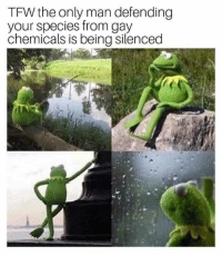 Tfw, Fear, and Gay: TFW the only man defending  your species from gay  chemicals is being silenced