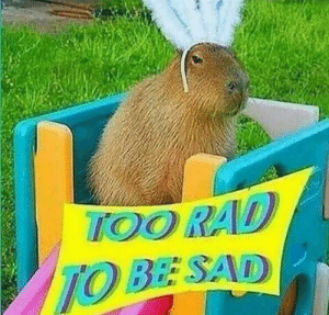 tfw when you're having suicidal ideations and wanna talk about it but don't want to bum out your friends: tfw when you're having suicidal ideations and wanna talk about it but don't want to bum out your friends