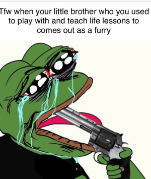 Dank, Life, and Memes: Tfw when your little brother who you used  to play with and teach life lessons to  comes out as a furry I just found out today. Lord help me. by OldenSpiff MORE MEMES