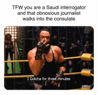 Fresh, Memes, and Tfw: TFW you are a Saudi interrogator  and that obnoxious journalist  walks into the consulate  Fresh Memes  I Gotcha for three minutes
