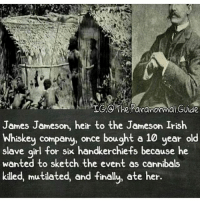 Irish, Memes, and True: TGOThe Paranormal Guide  James Jameson, heir to the Jameson Irish  Whiskey company, once bought a 10 year old  slave girl for six handkerchiefs because he  wanted to sketch the event as cannibals  killed, mutilated, and finally, ate her. True and living devils