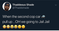 Jail, Shade, and Car: Thaddeous Shade  @Thaddshade  When the second cop car  pull up .. OH we going to Jail Jail Issa wrap!😩🤣💀 https://t.co/iB8TFdADP7