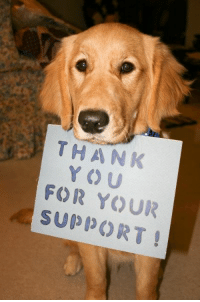 Community, Memes, and Trap: THANK  FOR U  YOUR  SUO PORT We want to say THANK YOU to everyone for supporting us for the past 5+ years and for all the recent donations on Giving Tuesday!   Lapeer's Adoptable Animals is a small organization that is made up of volunteers that dedicate their spare time to try to make a difference in an animal's life and our community! LAA is separate from Lapeer County Animal Control and part of what LAA does is support and network for the county, again, we are not employed by the county, we are volunteers.  LAA also does many things behind the scenes that you do not see here on Facebook.  We have accomplished some TNR (trap, neuter, release) projects, assist with lost and found of displaced animals, pet retention where we help assist pet owners with rehoming of their animals so they do not enter the shelter system, deliveries of pet food to low income families in the county, and our recent program with offering assistance with spay and neuter.    We love our community and we are here to help with what we can!  2016 has been more of a quiet year compared to the past but we always want to make sure our supporters know our involvement in the community and the support we give our local animal control.  We gathered some information for just this year and this is how we help and where some of your donations are benefited:  We took in 8 animals into foster care that needed our assistance…to name a few….Trooper with the fractured femur that needed emergency surgery, Sparky the kitten that needed his leg amputated, and Paisley the senior Beagle who was returned a couple times and was found lifeless one morning after being so ill.  We contributed $1100 towards vet credits.  We do this so the animal adopted has the benefit of receiving the appropriate vet care.  There were a few animals at animal control this past year that needed emergency vet care while they awaited adoption.  LAA is always more than willing to assist and this year we spent close to $750.  We started to spay and neuter some long term resident cats at animal control, and our total cost invested currently is $1200 to date.  LAA tries to help where needed at our animal control….we have purchased many supplies and miscellaneous items over the year which totals over $3,000.  When we mention that every dollar or amount is appreciated, we truly mean that as we work hard by fundraising to raise funds for our cause.  We do not receive any other form of income other than your hard earned donations and that is why we want to make sure that every one of you know that you are much appreciated for your support!