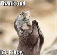 Thank God It's Friday!!! What are your plans for the weekend?: thank God  it's Friday Thank God It's Friday!!! What are your plans for the weekend?