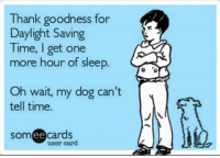 Daylight Savings: Thank goodness for  Daylight Saving  Time, get one  more hour of sleep  Oh wait, my dog can't  tell time.  someecards  user card
