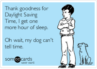 Did anyone get the extra hour of sleep this Daylight Savings, or did your pup wake you up early for food?: Thank goodness for  Daylight Saving  Time, get one  more hour of sleep  Oh wait, my dog can't  tell time.  ee  cards  user card.  or Did anyone get the extra hour of sleep this Daylight Savings, or did your pup wake you up early for food?