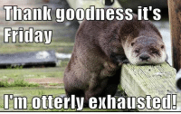 Exhausted Meme: Thank goodness it S  Friday  Im Otterly exhausted!