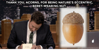 """THANK YOU, ACORNS, FOR BEING NATURE'S ECCENTRIC,  BERET-WEARING NUT.  ALLONTONIGHT <p><a href=""""https://www.youtube.com/watch?v=G7RHDqcL1Ek&amp;list=UU8-Th83bH_thdKZDJCrn88g&amp;index=3"""" target=""""_blank"""">Jimmy takes some time to write out his weekly thank you notes!</a></p>"""