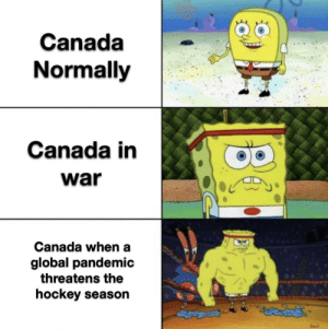 Thank you for being a great neighbor Canada: Thank you for being a great neighbor Canada