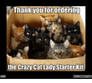 Image Of Mad Cat Lady Memes 20 Hilarious Cat Lady Memes You Would ...: Thank you for ordering  the Crazy Cat Lady Starter Kit  GESTAEMESCOM Image Of Mad Cat Lady Memes 20 Hilarious Cat Lady Memes You Would ...