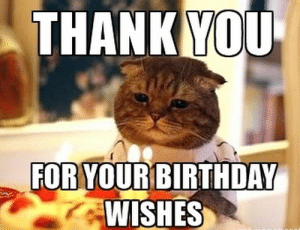 Thank You for the Birthday Wishes Memes | WishesGreeting: THANK YOU  FOR VOURBIRTHDAY  WISHES Thank You for the Birthday Wishes Memes | WishesGreeting