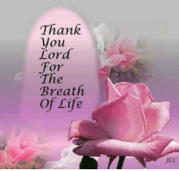 thank you lord: Thank  you  Lord  For  The  Breath  of Life  UCC
