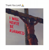thank you lord: Thank You Lord!  WILL  NEVER  BE  ASHAMED