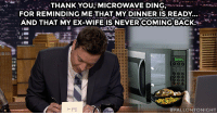 """Target, youtube.com, and Thank You: THANK YOU, MICROWAVE DING, -*.-  FOR REMINDING ME THAT MY DINNER IS READY...-  AND THAT MY EX-WIFE IS NEVER COMING BACK..  DONE  001  FALLONTONIGHT <p><a href=""""https://www.youtube.com/watch?v=8ucAZmnJsXM&amp;list=UU8-Th83bH_thdKZDJCrn88g"""" target=""""_blank"""">Thank you, microwave ding</a>, for reminding me that my dinner is ready&hellip; And my ex-wife is never coming back.</p>"""