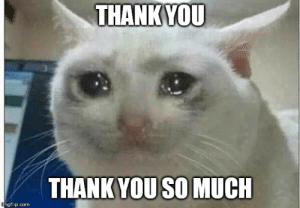 Thank You, DnD, and Com: THANK YOU  THANK YOU SO MUCH  imgflip.com When the DM spends hours making separate dream sequences exploring each character's subconscious based on their backstories and the campaign.