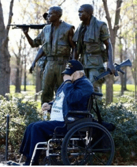 Memes, Thank You, and Appreciate: Thank you to all our veterans! We appreciate the sacrifices you all made. https://t.co/M81rtcrvFz