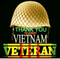 Memes, Thank You, and Vietnam: THANK YOU  TO EVERY  VIETNAM  VETERAN