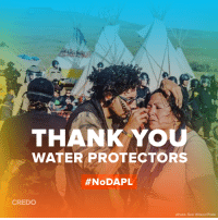 Memes, Flickr, and Engineering: THANK YOU  WATER PROTECTORS  #NoDAPL  CREDO  photo: Rob Wilson/Flickr The Army Corps of Engineers just delivered a major setback to the Dakota Access pipeline.   Please share the graphic below to thank the Water Protectors who made this possible and read CREDO's statement in response here: http://credo.cm/dapl #NoDAPL