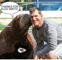 Andy Reid thanking Jim Harbaugh for Alex Smith!  Credit: Erica Isbanioly: THANKS FOR  ALEX SMITH  @NFL MEMEZ  SEAHAWK KILLA Andy Reid thanking Jim Harbaugh for Alex Smith!  Credit: Erica Isbanioly