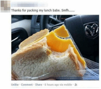 Mobile, Via, and Comment: Thanks for packing my lunch babe. Smfh....  Unlike Comment Share 6 hours ago via mobile