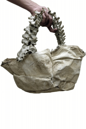 Thanks, I Hate This Handbag Made Of Alligator Tongue And Scoliotic Human Child's Spine: Thanks, I Hate This Handbag Made Of Alligator Tongue And Scoliotic Human Child's Spine