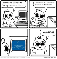 Windows, Computer, and Marvelous: Thanks to Windows  Subsystem for Linux..  I can have the workflow  of Linux in Windows!  TAK  MARVELOUS  Working on updates  11% complete  Don't turn off your computer  THIS COMIC MADE POSSIBLE THANKS TO DUNCAN LATHLIN  MRLOVENSTEIN.COM Marvelous.