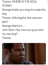John Wick, Thanos, and Dog: Thanos: WHERE IS THE SOUL  STONE?  Strange: (holds up a dog) Its inside this  dog  Thanos: (kills dog)ha, that was your  plan?  Strange:Wait for it  John WICK: Hey, nave you guys seen  my new dog?  Thanos