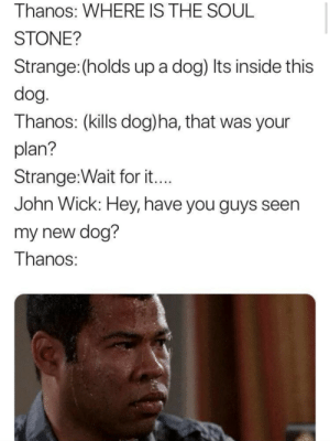 John Wick, Memes, and Thanos: Thanos: WHERE IS THE SOUL  STONE?  Strange: (holds up a dog) Its inside this  dog  Thanos: (kills dog)ha, that was your  plan?  Strange:Wait for it  John WICK: Hey, nave you guys seen  my new dog?  Thanos Wheres my dog? via /r/memes https://ift.tt/2AYv9gS