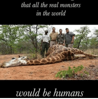 that all the real monsters  in the world  would be humans @Regrann from @strawvegan - Hunter aka small man syndrome. vegan crueltyfree animalrights animalliberations animallover animalabuse abuse violence hunting hunters sport boycott McDonalds KFC burgerking zoo circus fur leather wool exploitation meatlovers religion hamburger dinnertime freerange grassfed veganfood veganlifestyle healthyvegan