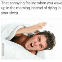 memeconsumer69:Every.. Single.. Night..: That annoying feeling when you wake  up in the morning instead of dying in  your sleep memeconsumer69:Every.. Single.. Night..