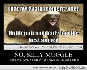 No, Silly Mugglehttp://omg-humor.tumblr.com: That awkward moment when  Hufflepuff suddenly has the  best animal  ICANHASCHEEZBURGER.COM G  MUGGLENET MEMES.COM  Like this? You'll hate  NO, SILLY MUGGLE  That's the HONEY badger, they have the regular badger  TASTE OF AWESOME.COM  Hitler hated this site too No, Silly Mugglehttp://omg-humor.tumblr.com