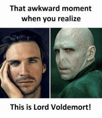 Memes, Awkward, and That Awkward Moment: That awkward moment  when vou realize  This is Lord Voldemort! Follow our new page @sadcasm.co