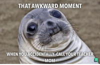 Seals best moments: THAT AWKWARD MOMENT  WHEN YOU ACCIDENTALLY CALLYOUR TEACHER  MOM Seals best moments
