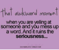 mess up: that awkward moment  when you are yelling at  someone and you mess up  a word. And it ruins the  Seriousness