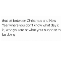 Im Bored: that bit between Christmas and New  Year where you don't know what day it  is, who you are or what your suppose to  be doing Im Bored
