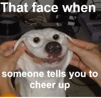 That face when  someone tells you to  cheer up