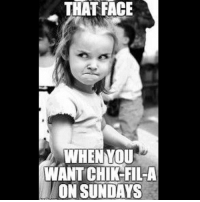 Lol, Memes, and Today: THAT FACE  WHEN YOU  WANT CHIKFIL-A  ON SUNDAYS Anyone today?? Lol tag someone you go there with! 👌🏼😌